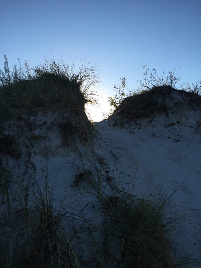 Morgensol fra Eco Beach Camp i Balkas smukken klitter